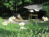 18-flora-fauna-3